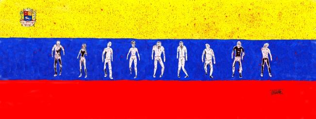 bandera-escudo svcz